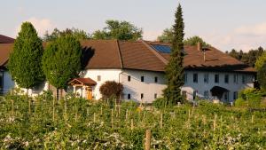 Brunnbauer-Haus
